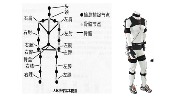 人体姿态测量领域