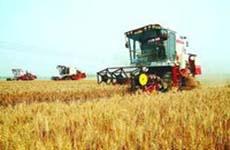 精准农业领域